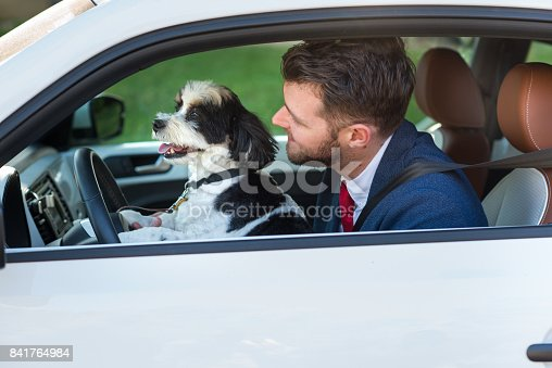 937331052istockphoto Living with Pets - Canine Driver 841764984