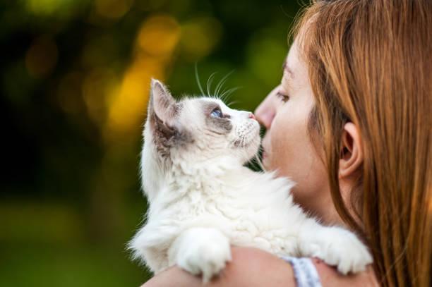 Living with pets picture id814018168?b=1&k=6&m=814018168&s=612x612&w=0&h=df4rms4dvxpludovem0kdugcwbres2dhz1tmx157idq=