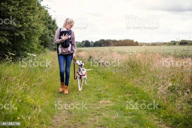 Living with pets picture id841883768?b=1&k=6&m=841883768&s=612x612&h=s6tybu2asfivygslfws2rvg7gv80kfuzpyesyl0f8mu=