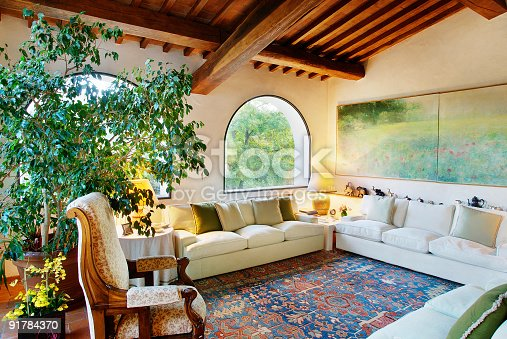 istock Living-room with sofa, carpet, plant and raftered ceiling 91784370