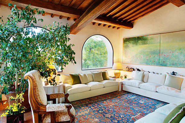 Living-room with sofa, carpet, plant and raftered ceiling stock photo