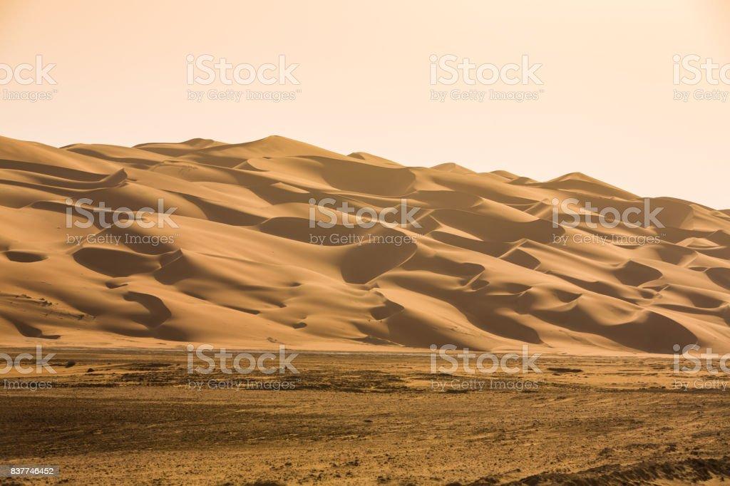 Liwa Oasis stock photo