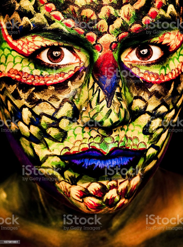Lizard Face royalty-free stock photo