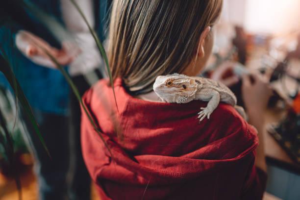 Lizard on girls shoulder picture id898686696?b=1&k=6&m=898686696&s=612x612&w=0&h=wjrsj3iav3ruunyhbjri3ffjvi1 8kfjrfykni1kaqk=