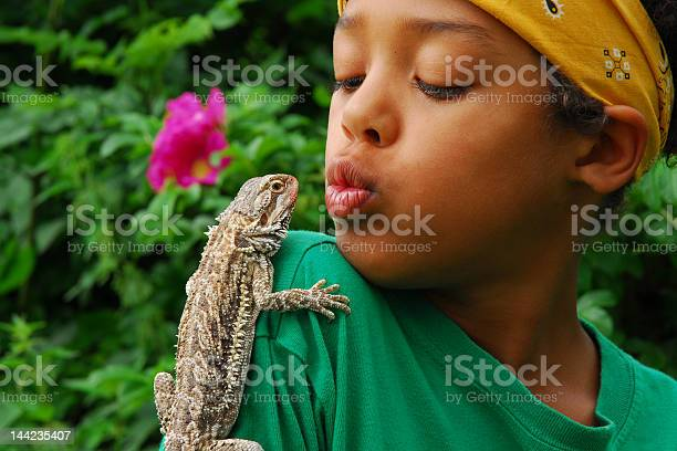 Lizard perched on boys shoulder in tropical garden picture id144235407?b=1&k=6&m=144235407&s=612x612&h=5agx qt47tfkb28w9hxxxmvzhmoo0p4zt2mazozqhtu=