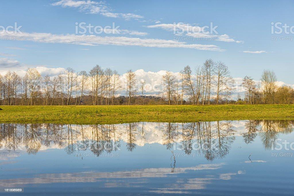 Ljubljana Marshes in spring royalty-free stock photo