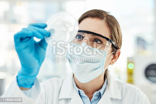 Shot of a young scientist working with medical samples in a lab