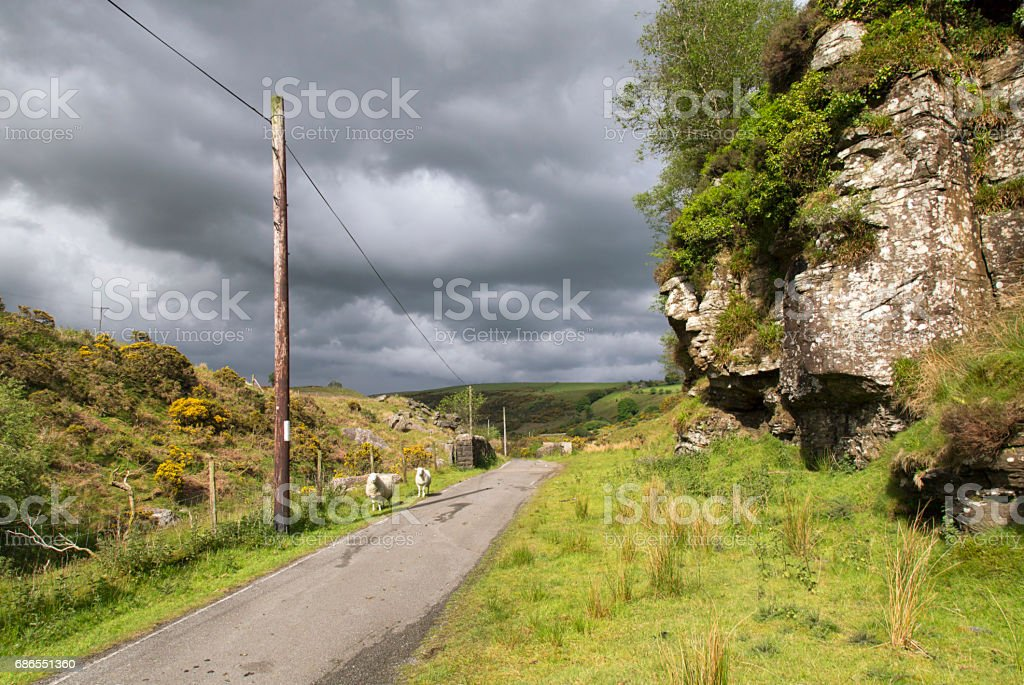 Lliw Valley Reservoir - Footpath royalty-free stock photo
