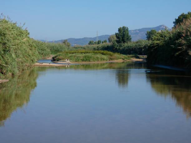 Llobregat River, Barcelona, Spain stock photo
