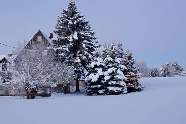 ländliche weihnachten - weihnachten stok fotoğraflar ve resimler