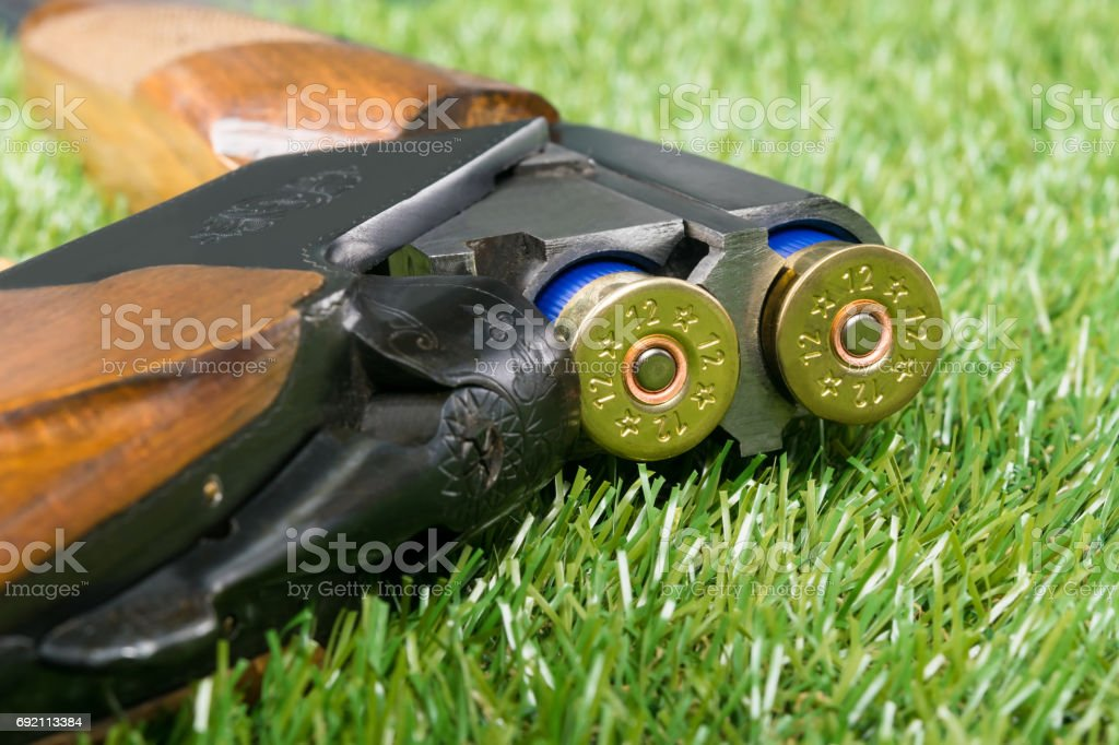 loaded gun for hunting is on the background of green grass stock photo