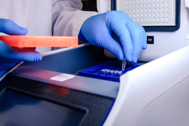 loading a dna tube into a pcr (polymerase chain reaction) thermocycler machine in a bioscience laboratory. concept of science, laboratory and study of diseases. coronavirus (covid-19) treatment developing. - pcr imagens e fotografias de stock