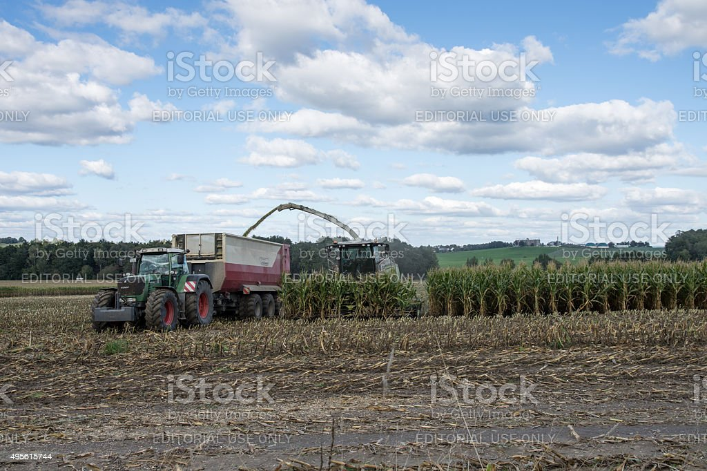 Loading of corn in the truck trailer. Dresden, Germany. stock photo