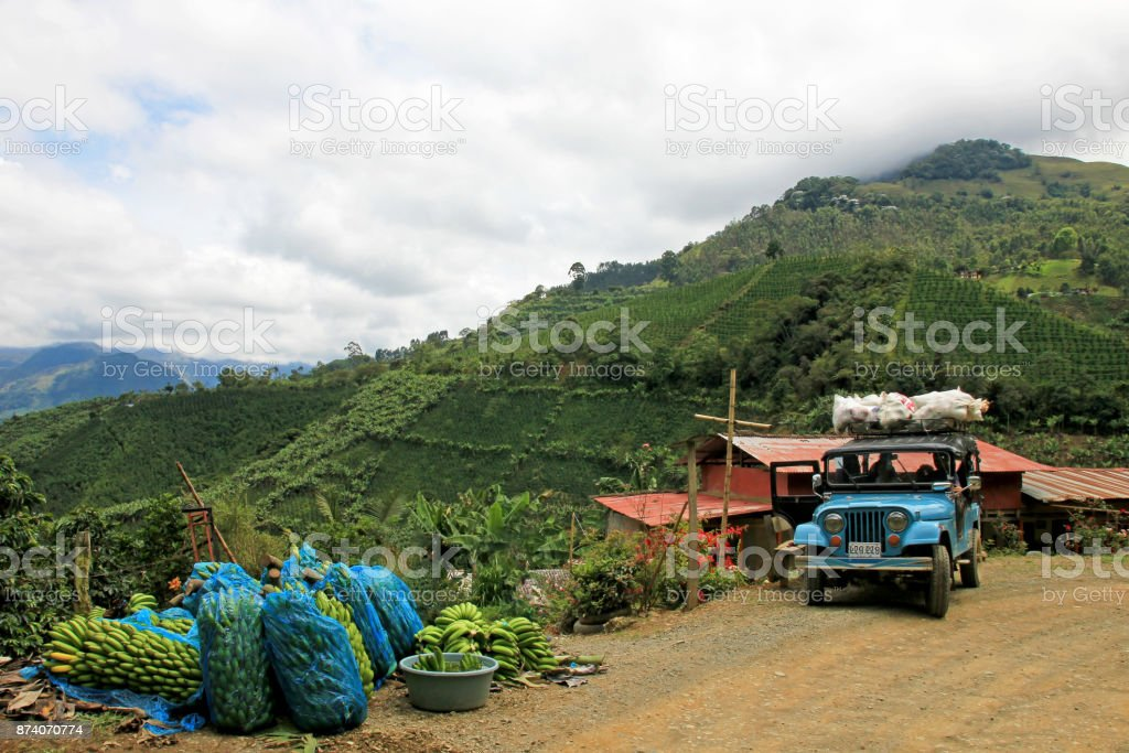 Loading Truck With Bananas For Transporting Near El Jardin Antioquia