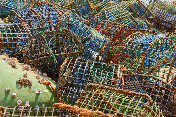 Lobster and crab baskets in Spain stock photo