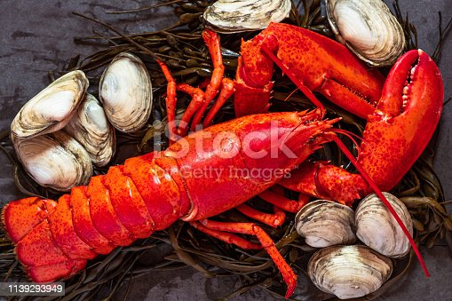 Overhead shot of iconic Maine and New England cuisine: lobster and soft-shell clams, called steamers, on bed of seafood