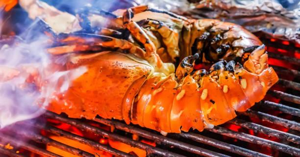 lobster barbecue grill steamed cooking - peixe na grelha imagens e fotografias de stock