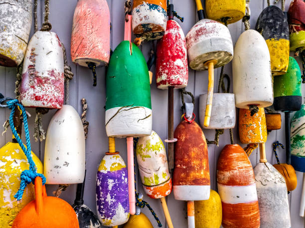 Lobster buoys on wall in Maine Colorful lobster buoys hang on the outside wall of a fishing shack, in Maine buoy stock pictures, royalty-free photos & images