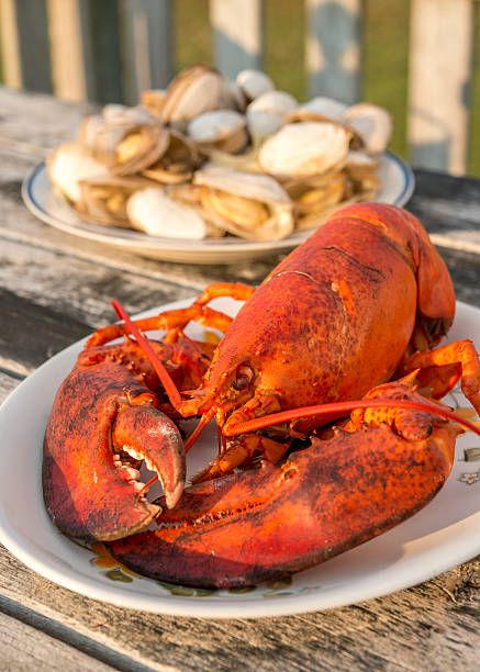 lobster dinner at beach cottage - prince edward island stock photos and pictures