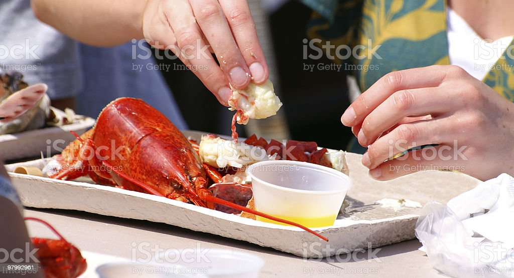 Lobster eating royalty free stockfoto