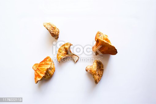 Fresh lobster mushrooms on a white background