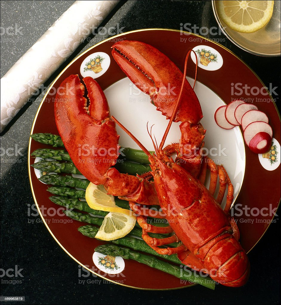 Aragosta stock photo