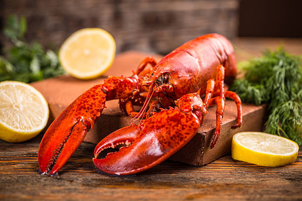 Lobster stock photo