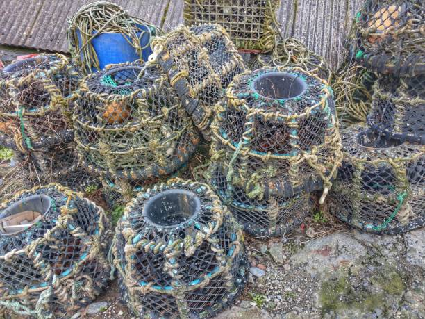 Lobster pots, Portloe, Cornwall stock photo
