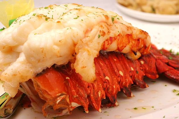 lobster tail - tail stock photos and pictures