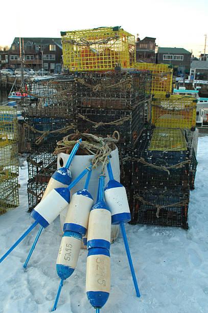 Lobster trap – Foto