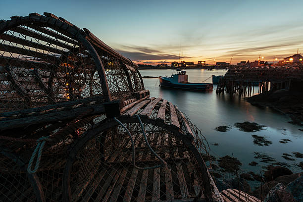 Lobster Traps in Twilight stock photo