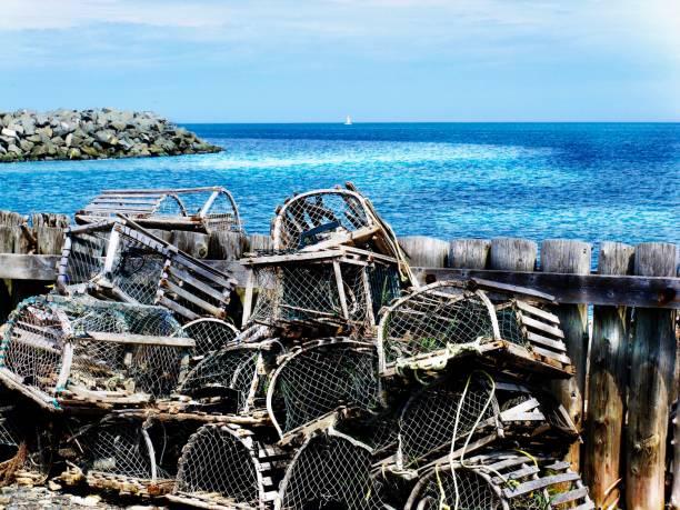 cages de homards en gaspésie - josianne toubeix photos et images de collection