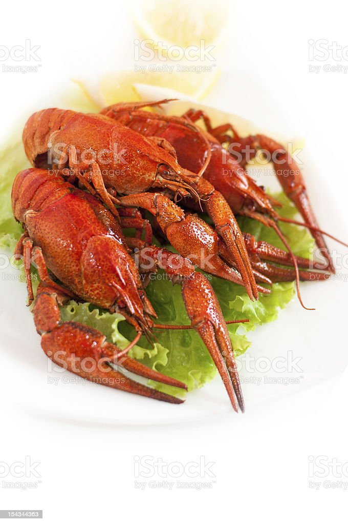 Lobsters royalty-free stock photo