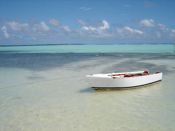 local caribbean fishing boat - fsachs78 stockfoto's en -beelden