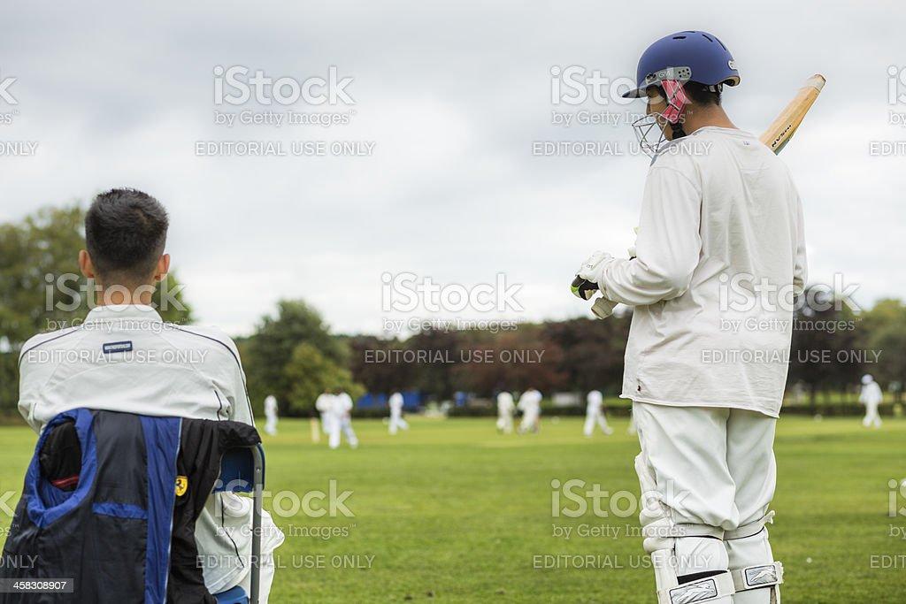 Local Cricket stock photo