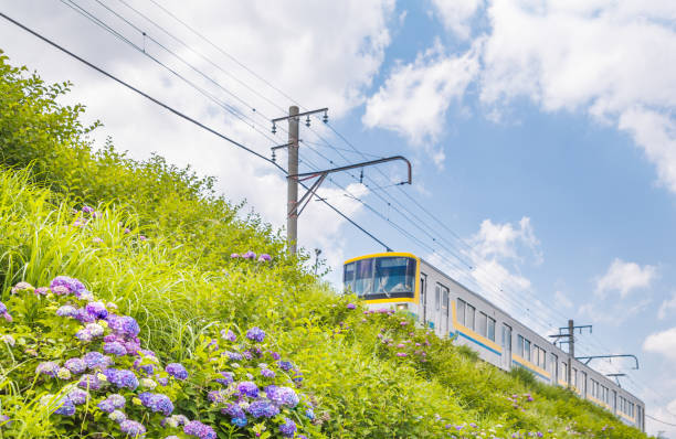 Local line running in the outskirts of Yokohama stock photo