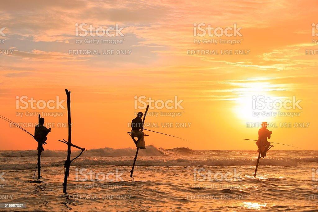 Local men fishing on stick at sunset in Unawatuna stock photo