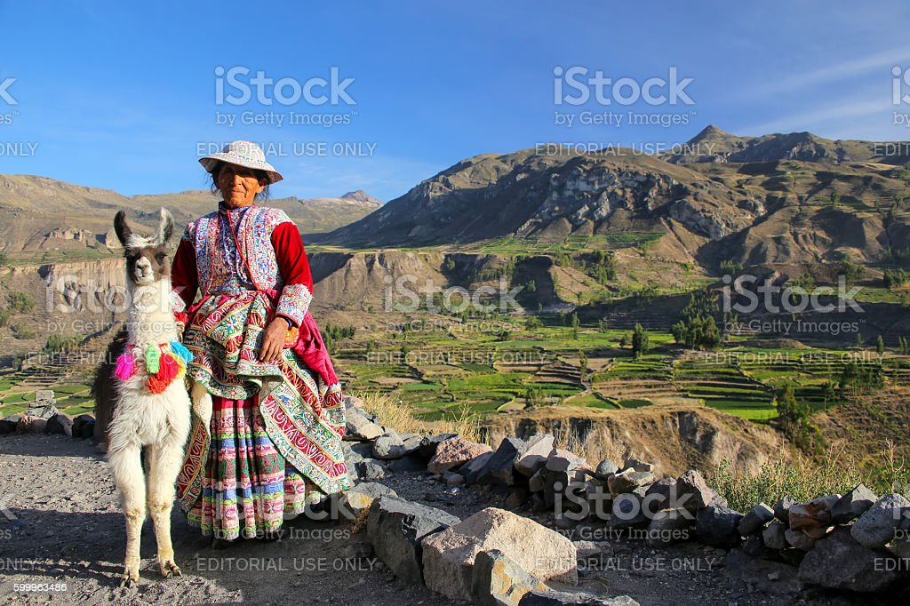 Local woman with llama standing at Colca Canyon in Peru stock photo