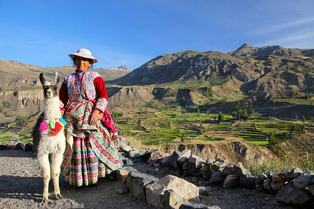 Local woman with llama standing at Colca Canyon in Peru – Foto