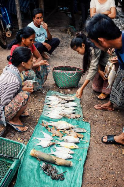 junge frau verkaufen fische und frösche auf dem dorfmarkt - plane kaufen stock-fotos und bilder
