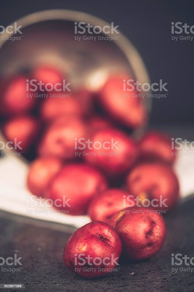 Locally Grown Organic Baby Red Potatoes stock photo
