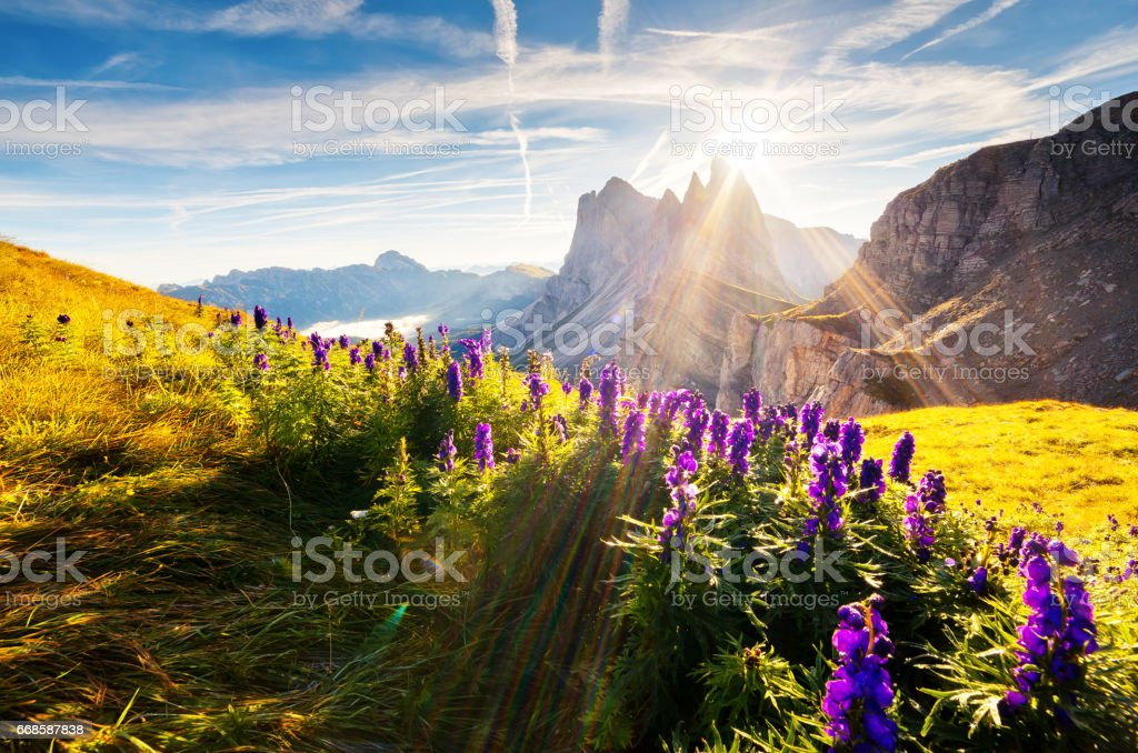 Location place Dolomite mountains, South Tyrol, Italy, Europe. Explore the world's beauty. stock photo