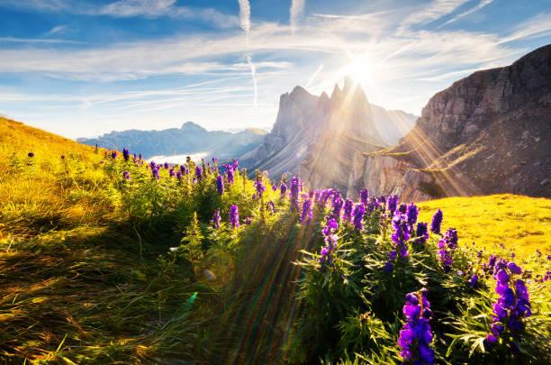 Ubicación lugar dolomita montañas, Tirol del sur, Italia, Europa. Explorar la belleza del mundo. - foto de stock