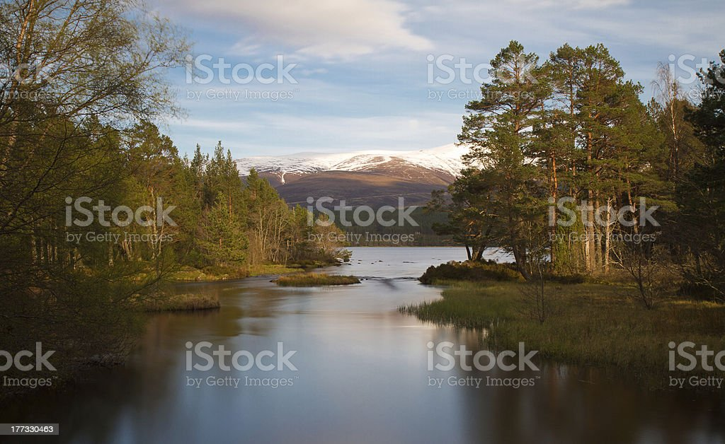 Loch Morlich in the evening sun stock photo