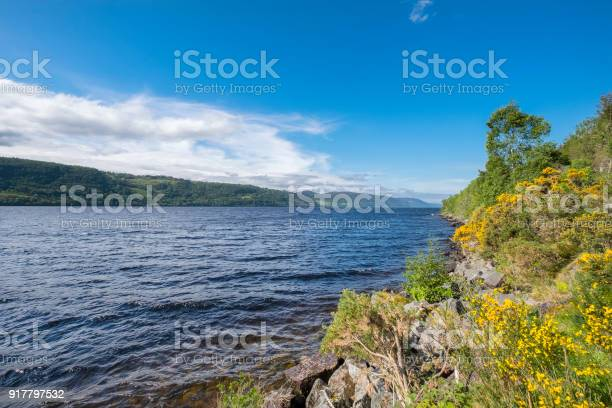 Loch ness a large deep freshwater loch in the scottish highlands picture id917797532?b=1&k=6&m=917797532&s=612x612&h=yzrtrbneofwdeo7ry1zesjoagnvo6qnwijqz6vwjevi=