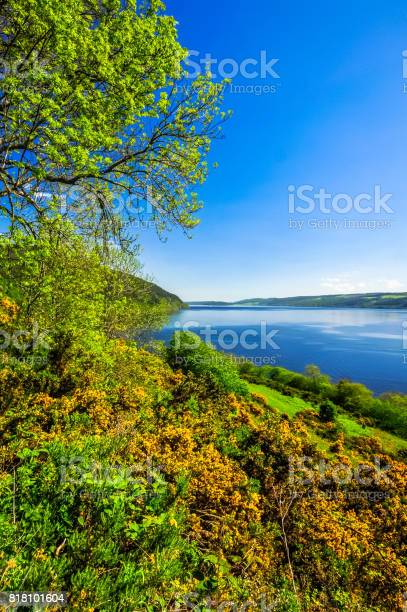 Loch ness on a summers day picture id818101604?b=1&k=6&m=818101604&s=612x612&h=zavuo svmrrj8t4dva3gmxz8naimkjv8b4ljeiyclag=