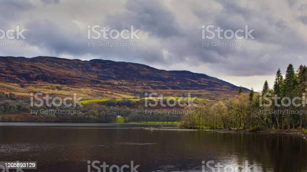 Loch ness picture id1205893129?b=1&k=6&m=1205893129&s=612x612&h=xyvpgka7tlkms8gltzi9reokhf2ihwf6m100y jbnng=