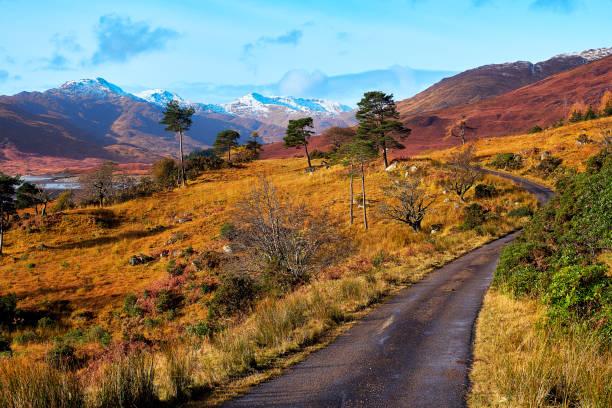 loch quoich landskap, skottland - fur bildbanksfoton och bilder