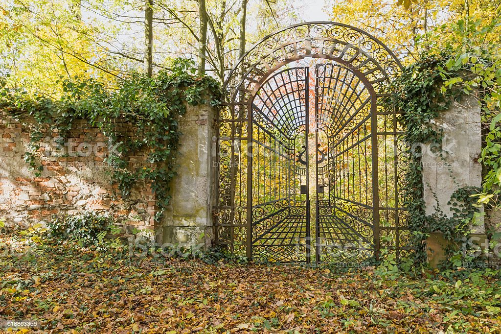 Locked iron gate in the autumn park. Horizontally. stock photo