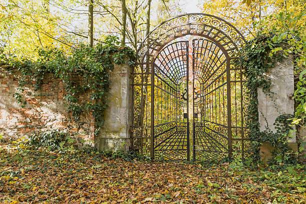 Locked iron gate in the autumn park. Horizontally. stock photo
